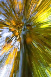 Zoom-burst-6364