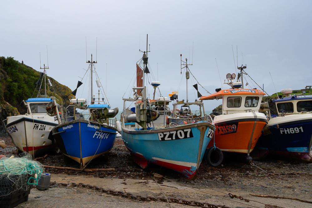Bunte Fischerboot, wegen des Wetters auf's Land gezogen in schöner Reihe von vorne auf die Bootsspitzen fotografiert und von links nach rechts in weiß, marineblau, himmelblau, rot und dunkelblau im Hafen von Cadgwith auf der Lizard Halbinsel in Cornwall