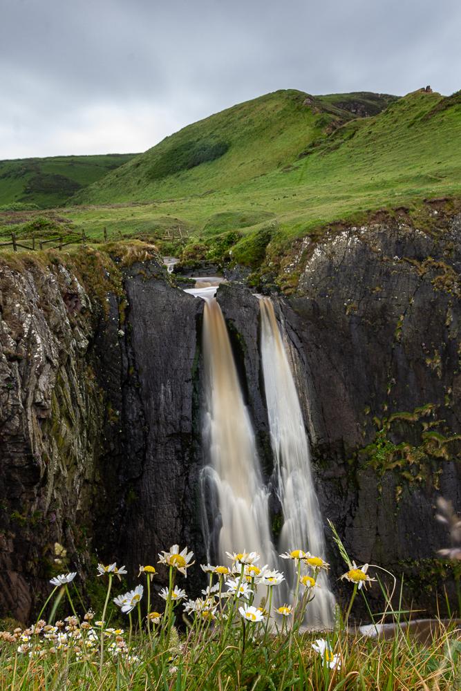 Spekes Mill Wasserfall mit Graufilter aufgenommen und mit Margeriten im Vordergrund