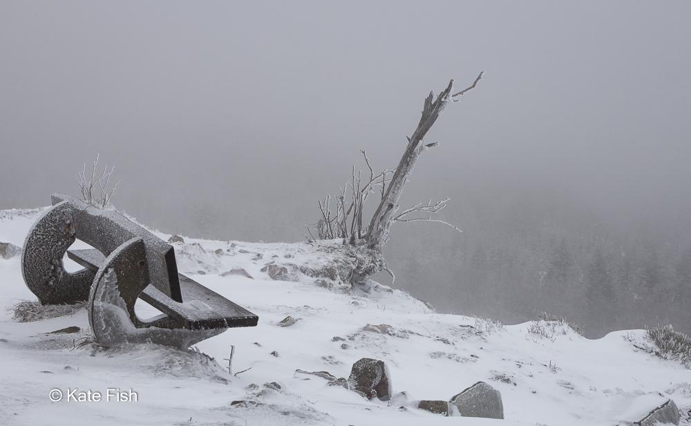 Mystische Atmosphäre mit einer Holzbank mit Reif überzogen mit Blick auf Nadelwald, der im Schneesturm nur nebelhaft zu erkennen ist. Beispiel für Wetter im Fotografie Kurs - schöne Winterbilder vor der Haustür