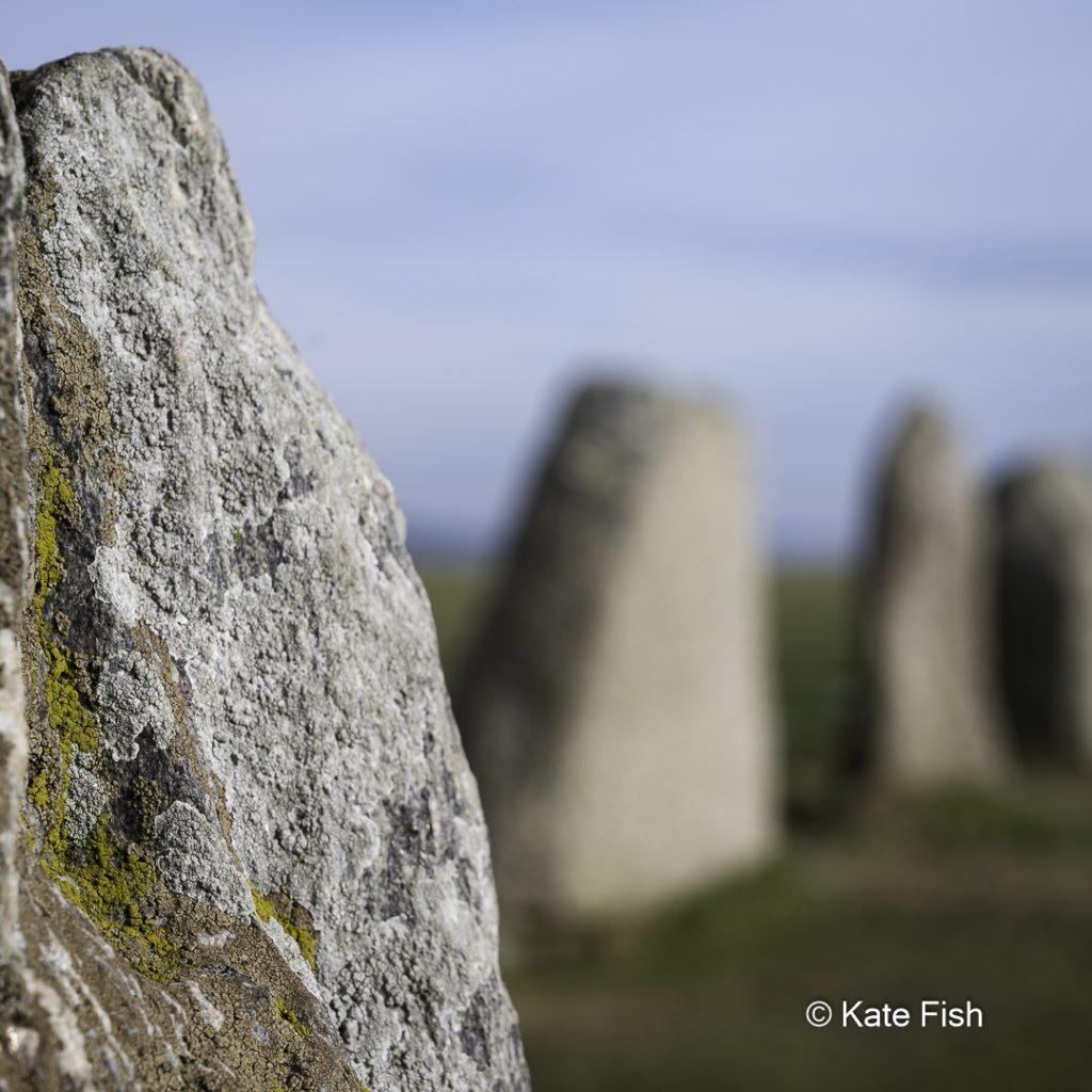 Ales Stenar, Detailaufnahme eines Steines mit Flechten und weiter hinten stehende Steine in der Unschärfe