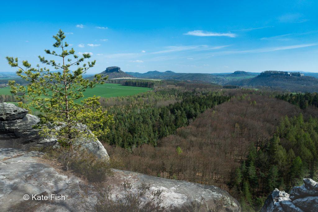 Ausblick auf den Lilienstein vom kleinen Bärenstein im Elbsandsteingebirge, genauer der Sächsischen Schweiz. Deutlich sattere Farben durch Einsatz meines Hoya Polfilter, besonders im Grün der Felder und der Birke im Vordergrund, sowie im strahlendblauen Himmel. Felskante im Vordergrund