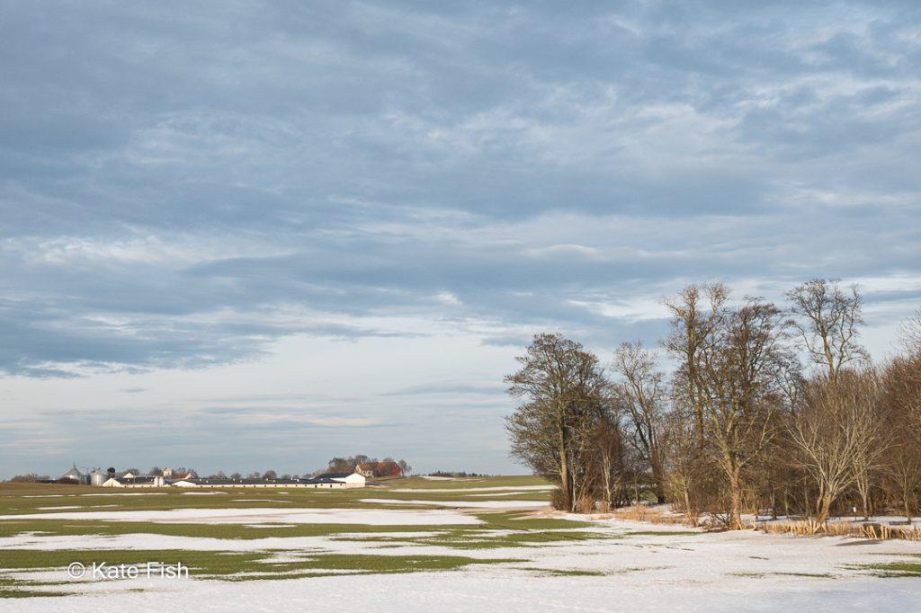 Typische Landschaft der Provinz Schonen, weite Fläche mit einem Rest Schnee, wolkigem, aber freundlichem Himmel und mit Bauernhof in der Ferne und Bäumen im Vordergrund als Beispiel für Fotolocations in Schweden