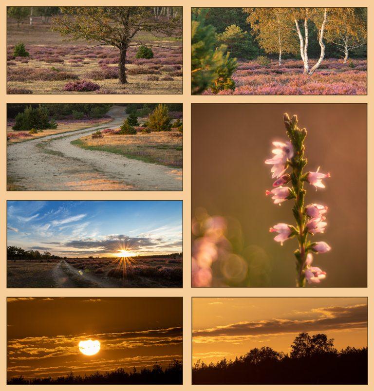 Collage aus dem aus dem online Fotokurs Landschaft vor der Haustür 2020
