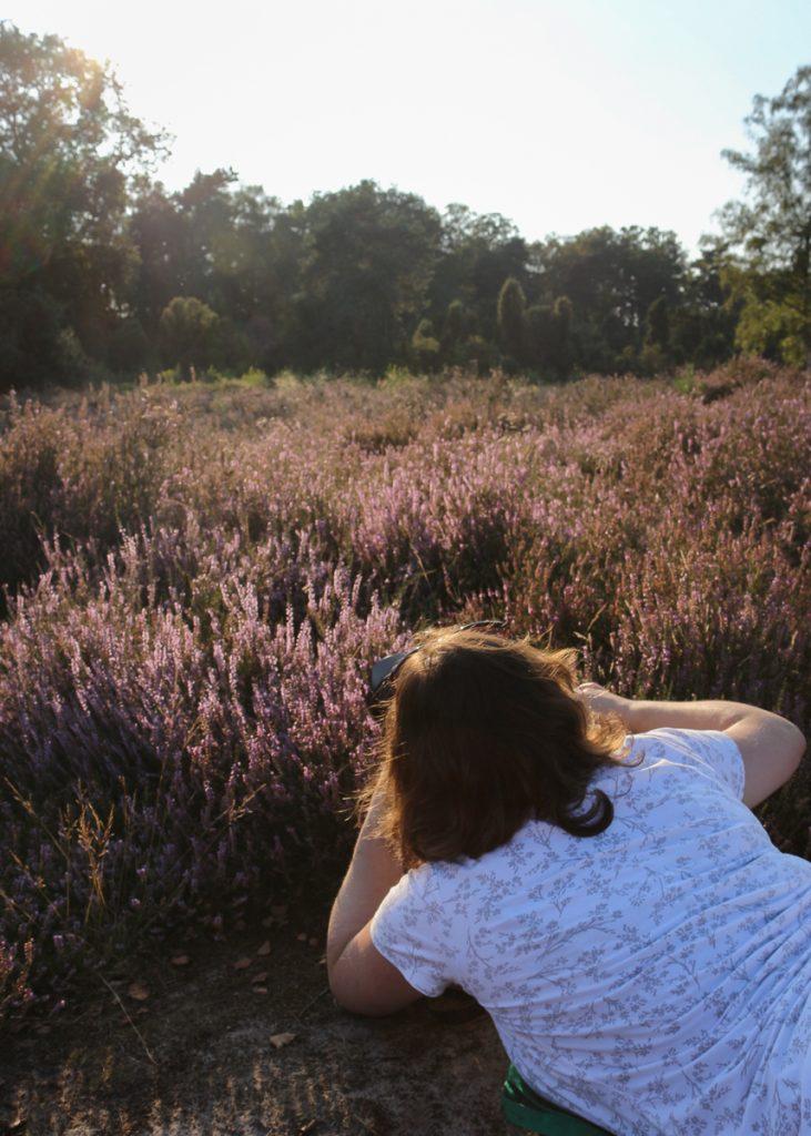 Ich auf dem Boden liegend Heidekraut fotografierend